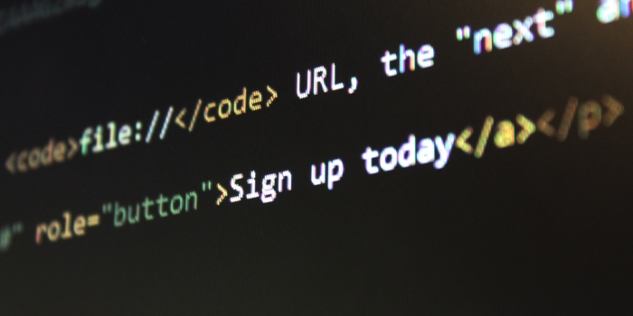 C Developer job description template