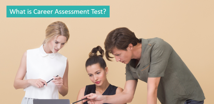 what-is-career-assessment-test