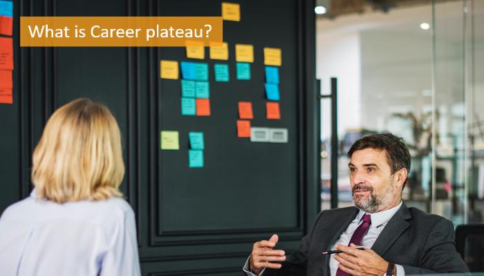 what-is-career-plateau