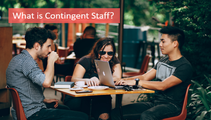 what-is-contingent-staff