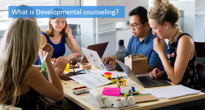 what-is-developmental-counseling