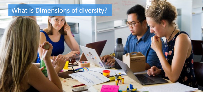 what-is-dimensions-of-diversity