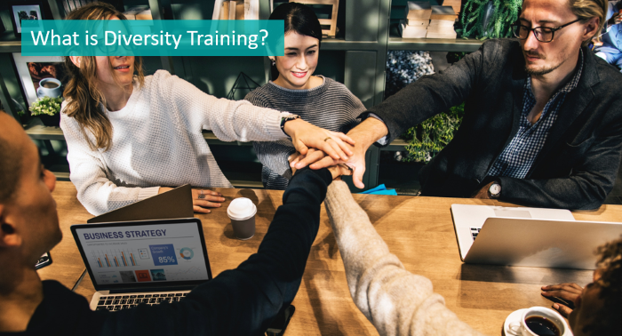 what-is-diversity-training