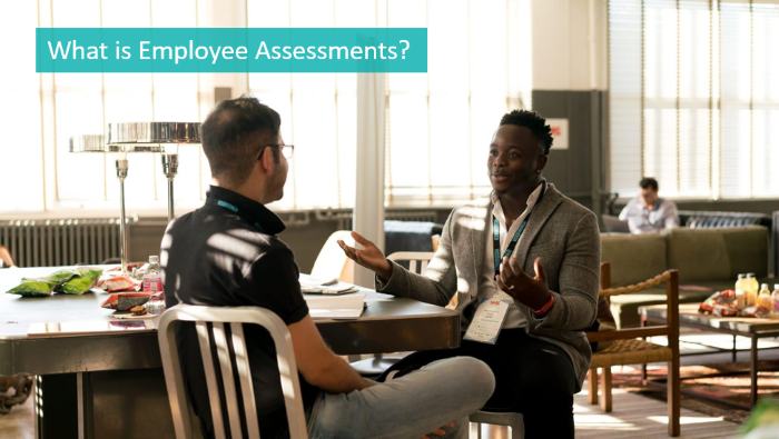 what-is-employee-assessments
