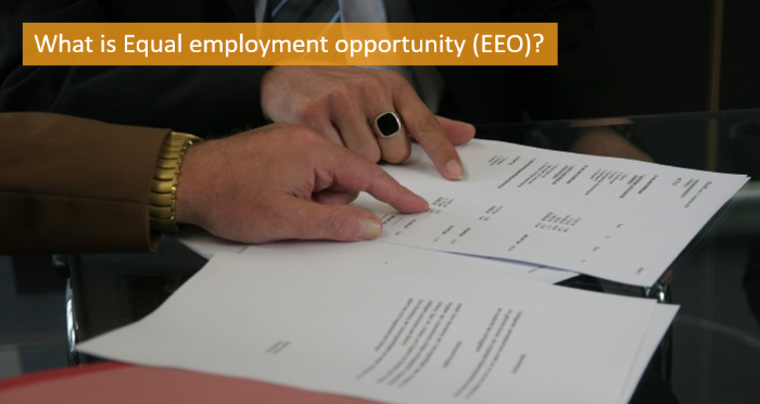 what-is-equal-employment-opportunity-eeo