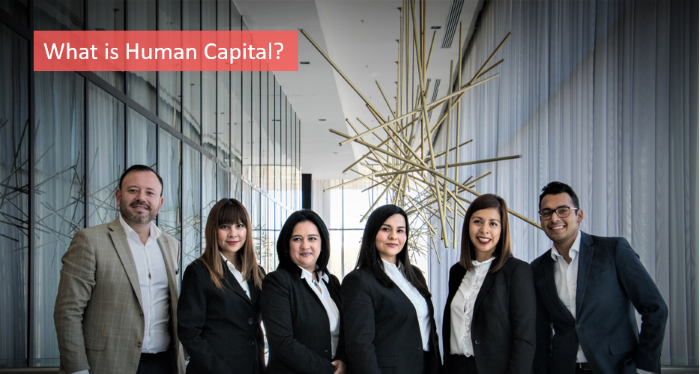 what-is-human-capital