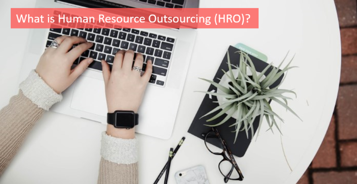 what-is-human-resource-outsourcing-hro