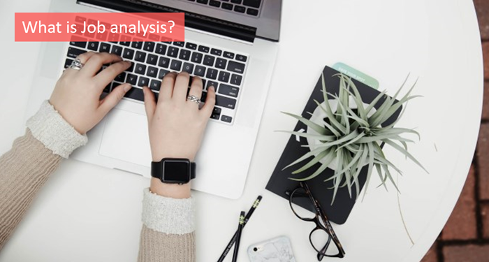 what-is-job-analysis