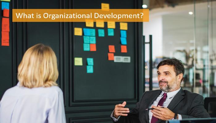 what-is-organizational-development