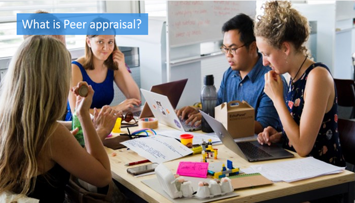 what-is-peer-appraisal