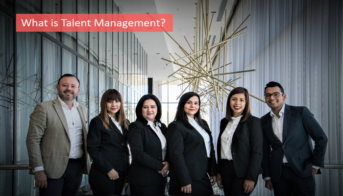 what-is-talent-management