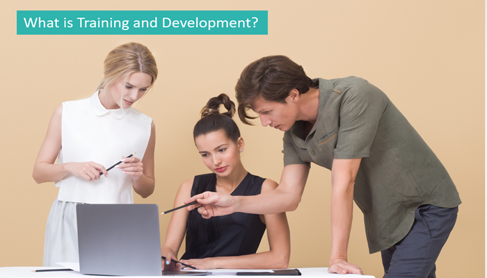 what-is-training-and-development