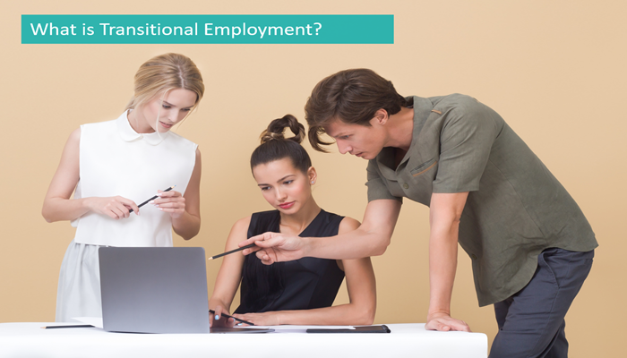 what-is-transitional-employment